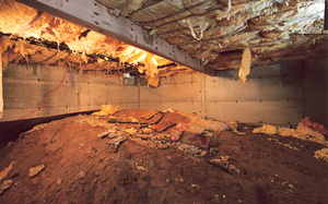 Crawl Space Moisture Barrier before in Phoenix
